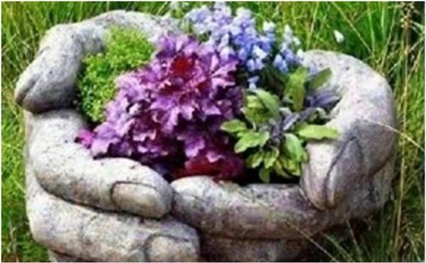 Chắc hẳn khu vườn nhà bạn sẽ đẹp hơn rất nhiều với chậu cây độc đáo này. (Ảnh: Internet)