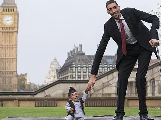 Sultan cao đến 2,46 mét. (Ảnh: Internet)