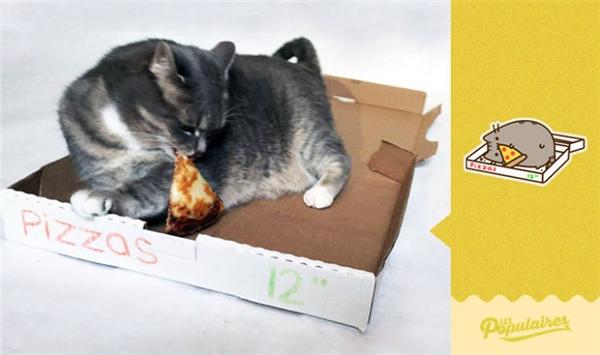 Còn có cả miếng pizza ngon lành. (Ảnh: Internet)
