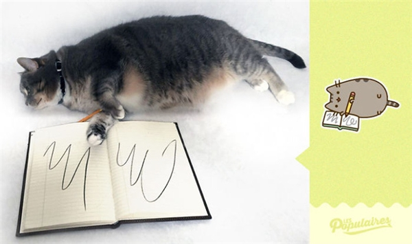 Mèo Jackie cũng được vẽ nguệch ngoạc lên giấy như Pusheen. (Ảnh: Internet)