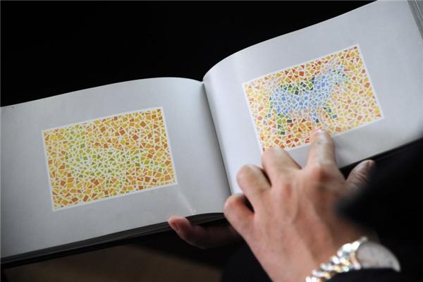 Ở phần thi thị lực các thí sinh phải phân biệt được màu sắc. (Ảnh: Internet)