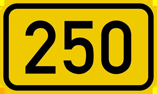 """Trong tiếng Trung, 250 được phát âm có nghĩa là """"thằng ngu"""". (Ảnh: Internet)"""