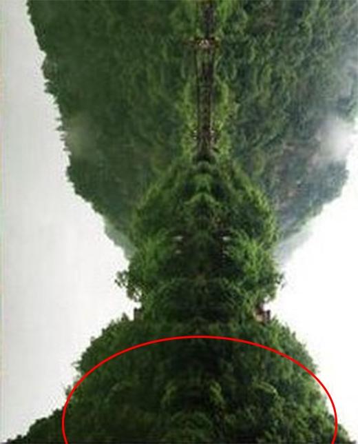 Xoay ngược bức ảnh xuống đất còn nhìn thấy một hình ảnh gần giống với cái đầu củaNgưu Ma Vương.