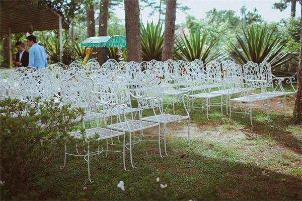 Dãy ghế trắng đơn giản nhưng tinh tế.
