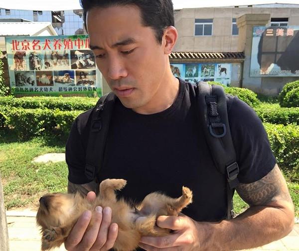 Anh đã cứu được rất nhiều chó trong mỗi chuyến đi tới các nước châu Á.