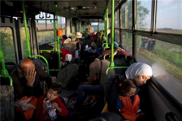 Chủ yếu là phụ nữ và trẻ em Syria trên chuyến tàu đặc biệt của cảnh sát Hungary đưa họ tới biên giới với Áo để tiến sâu hơn vào châu Âu.