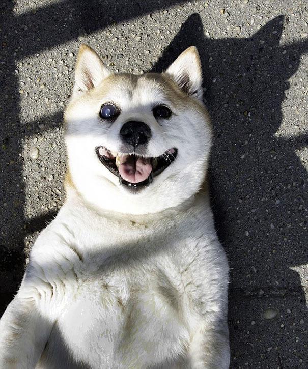 Gương mặt củachú lúc nào cũng như đang cười.