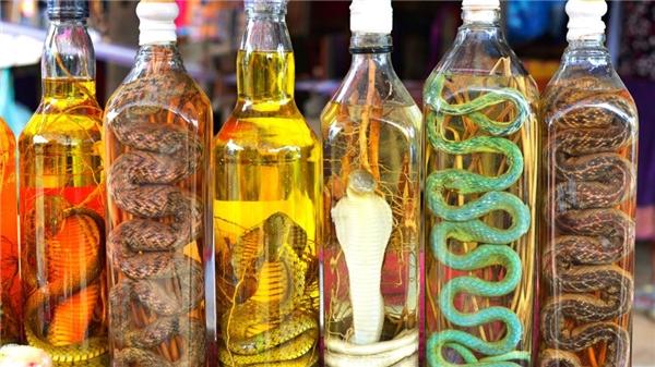 Rượu rắn là một bài thuốc quí trị được nhiều bệnh. (Ảnh: Internet)