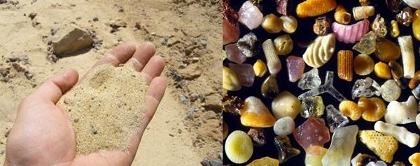 6. Hóa ra những hạt cát khi được phóng to lên 300 trăm lần sẽ trông như thế này.