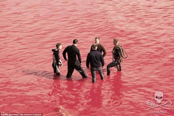 Một số dân làng đứng nghỉ ngơi trò chuyện ngay giữa biển máu.