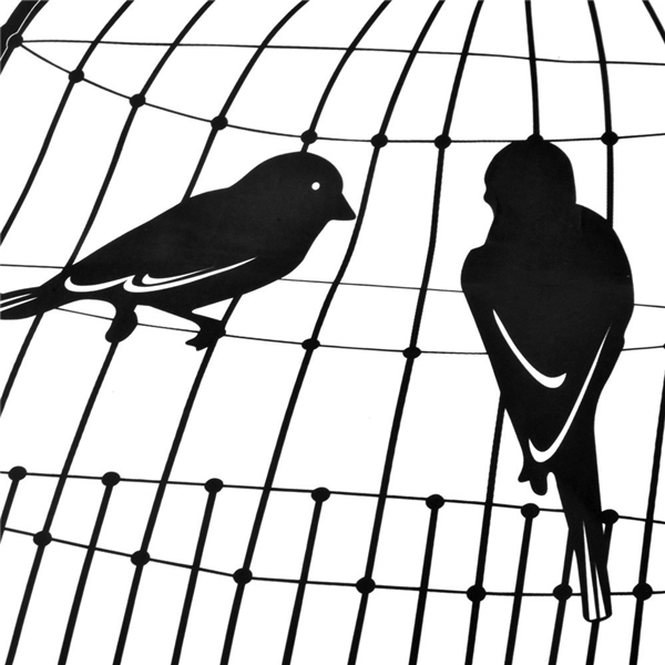 2. Có 5 con chim và 4 cái lồng. Làm cách nào để nhốt cả 5 con chim vào 4 cái lồng nhưng số lượng chim ở mỗi lồng đều bằng nhau?(Ảnh Internet)