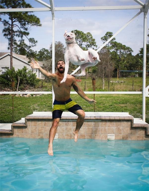 """Biểu cảm của chú chó trông thật """"đểu cáng"""", có lẽ vì biết nó sắp bay thẳng vào mặt chủ chăng?"""
