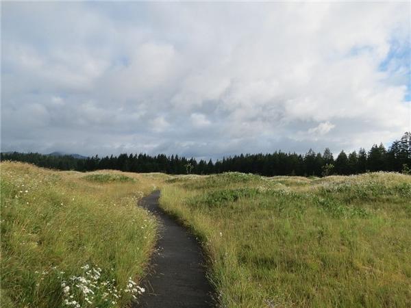 Có con sông nhỏchảy qua giữa thảo nguyên.