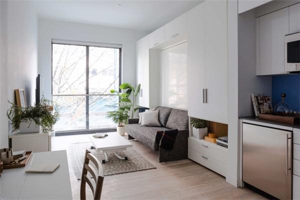 Cây xanh là yếu tố không thể thiếu trong những căn hộ nhỏ không có ban công mở ra ngoài trời như thế này.