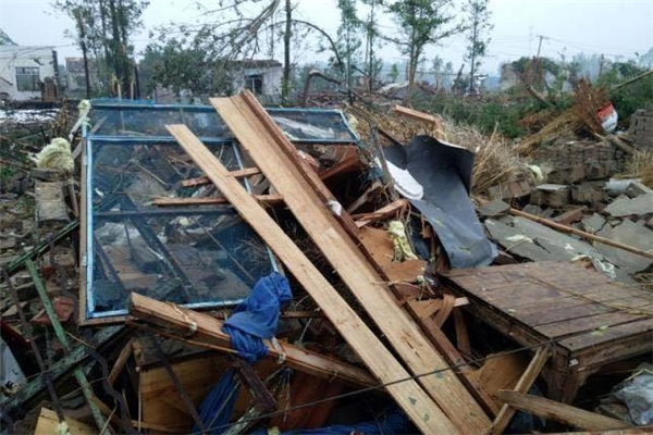 Lực lượng cứu hộ tỉnh Giang Tô cho hay, cơn bão với vòi rồng còn kèm theo mưa đá, gió giật mạnh tới cấp 12. Hình ảnh trên mạng xã hội cho thấy các cây to của một trường học 3 tầng đổ xuống sân chơi. (Ảnh Internet)