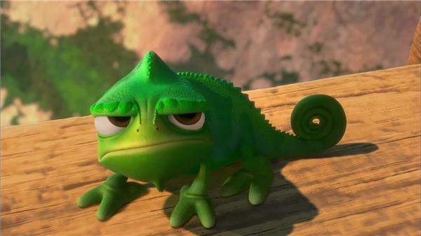 Vẻ mặt khó ở đặc trưng của chú kì nhông Pascal. (Ảnh: Internet)