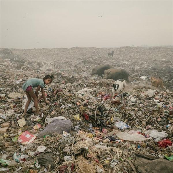 Đáng sợ với thành phố mở mắt là thấy rác