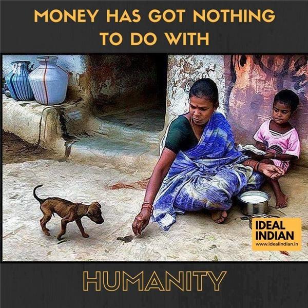 Nhìn bộ dạng ốm yếu của chú chó nhỏ, người phụ nữ này không cam lòng... (Ảnh: Ideal Indian)