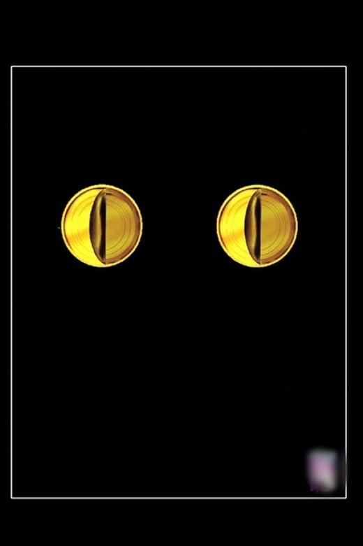 Bạn thấy đây là mắt mèo hay là 2 hộp thức ăn cho mèo? (Ảnh: Internet)