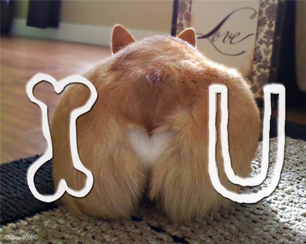 I ( )( ) U!