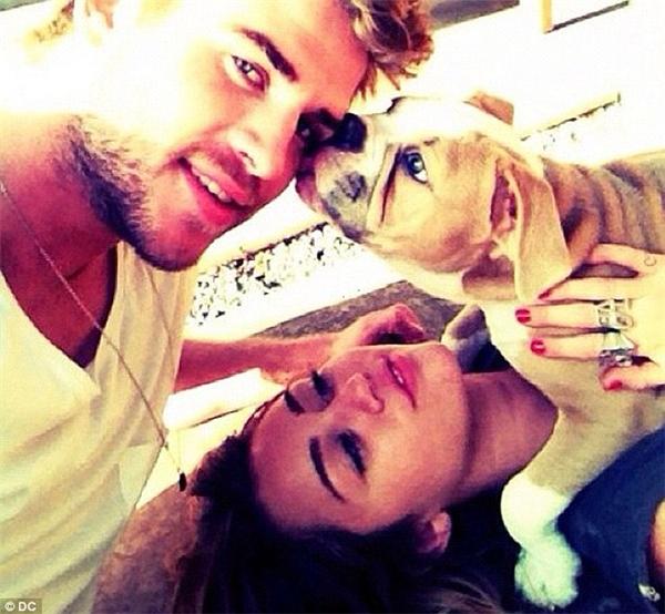 Cả 2 đều có tình yêu thương đối với động vật. (Ảnh: Internet)