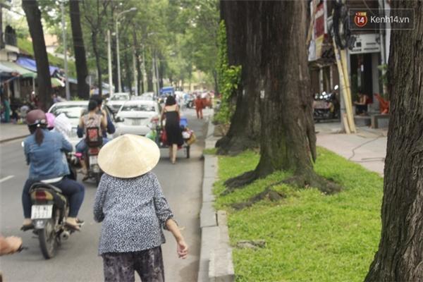 Trên đường phố đông đúc, có một người phụ nữ đẩy xe đi trước, và một bà lão chậm bước theo sau.