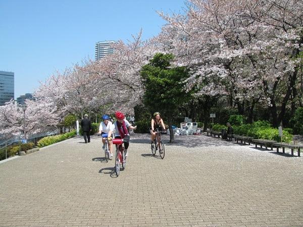 Tokyo, Nhật Bản.(Ảnh: Internet)