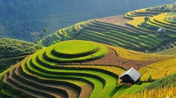 Ẩm thực Mai Châu - Những món ăn dân dã nơi phố núi làm nao lòng thực khách