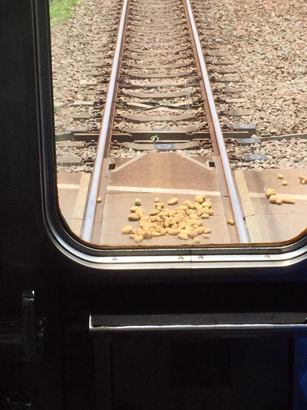 Cụ già làm đổ khoai vương vãi trên đường ray.