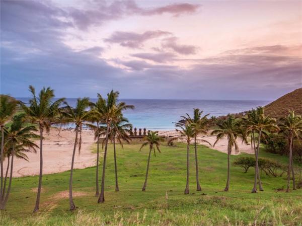 Điểm nhấn của bãi biển này là các tượng đá Moai nhìn ra bãi biển Anakena hùng vĩ trên đảo Phục Sinh, Chile. Bãi biển này được bao bọc bởinhững hàng dừa và cọ xanh tươicùng nước biển ấm để du khách thoải mái thư giãn. (Ảnh Internet)