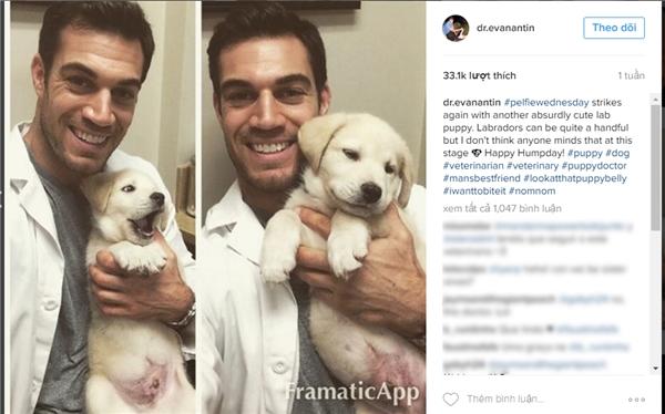 Evan Antin,bác sĩ thú y ở bệnh việnConejo Valley Veterinary, Mỹ. (Ảnh: Internet)