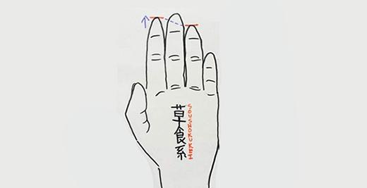Ngón trỏ cao hơn ngón đeo nhẫn. (Ảnh: Internet)