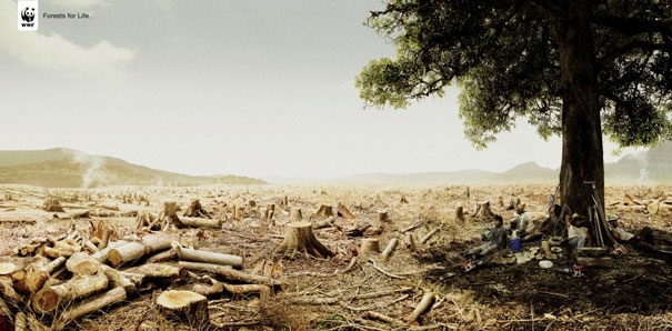 Sẽ chỉ còn là vấn đề thời gian trước khi mọi bóng cây hoàn toàn biến mất khỏi thế giới này.