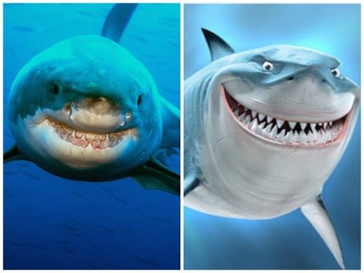 Chú cá mập đáng yêu trong Finding Nemo. (Ảnh: Internet)