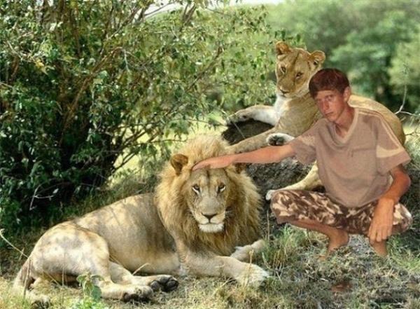 Ai sợ sư tử thì sợ chứ anh với nó không khác gì anh em một nhà nhé.