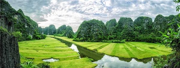 Du lịch Ninh Bình- Chiêm ngưỡng vẻ đẹp cuốn hút tựa tranh vẽ ở Tam Cốc vào mùa lúa chín