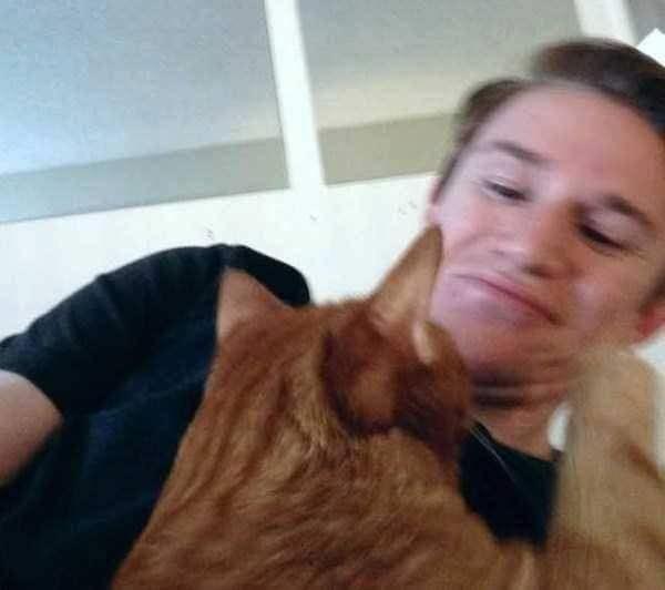 """Anh chủ tự nhủ: """"Có tấm hình này rồi, cả thế giới sẽ biết mình bị mèo bạo hành. Ha ha ha!"""""""