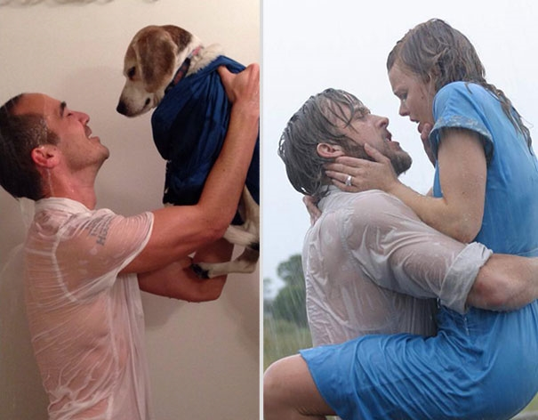 Chàng nhân viên có thể chưa đủ chuẩn thay thế Ryan Gosling nhưng em cún đẹp ăn đứt Rachel McAdams rồi đấy nhé. (Ảnh: Internet)
