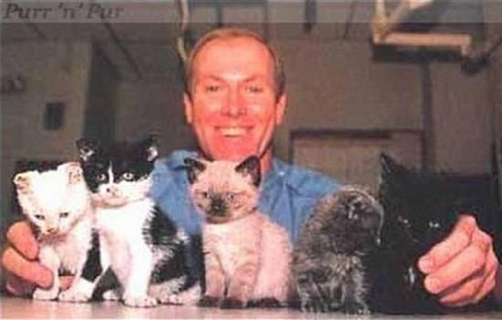 Câu chuyện cảm động nhanh chóng được lan rộng, đã có hơn 7 nghìn lời yêu cầu muốn nhận nuôi cô mèo này.