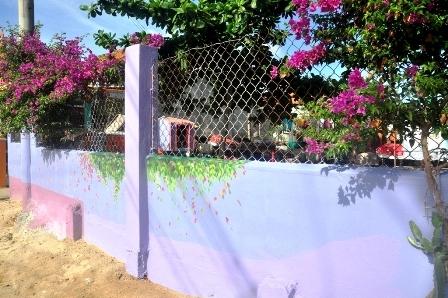 Tường rào cũng có thể lãng mạn thế này đây.