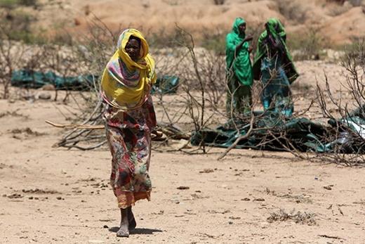 Không chỉ bị đe doạ bởi bom súng, họ còn phải đối mặt với nạn đói khi mà hạn hán do El Nino đang bao trùm hầu như toàn bộ khu vực Sừng châu Phi.