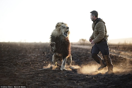 Người đàn ông huyền thoại có thể làm bạn thân với chúa tể muôn loài