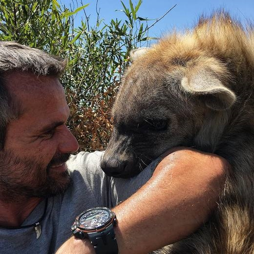 Ngoài sư tử, Kevin còn khá thân thiết với bầy linh cẩu trong khu bảo tồn của anh.