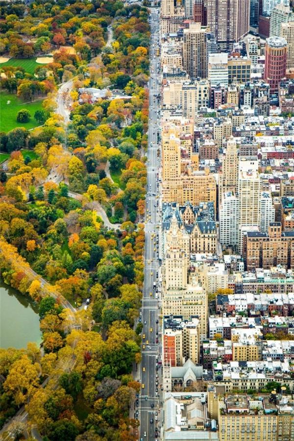 Công viên Manhattan, thành phố New York.