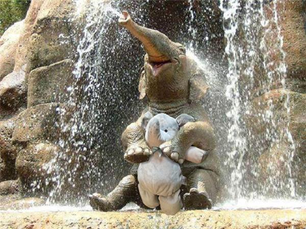 """Gặp được """"đồng loại"""" rồi cùng đi tắm thác với nhau thật là sung sướng."""