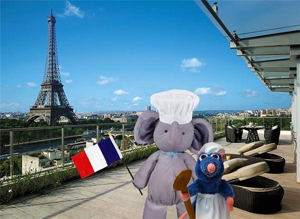 Sau đó chú liền đến Paris để trổ tài nấu nướng cùng chú chuột Ratatouille.