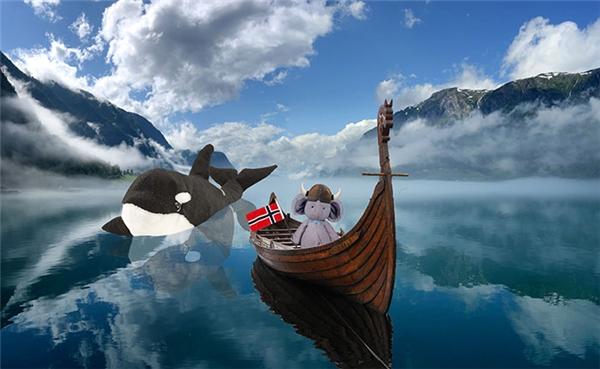 Rồi lại vi vu ở Na Uy cùng cá voi bông, hẳn là của một bạn nhỏ nào đó tưởng là mất đây mà.