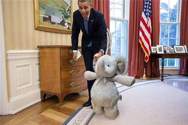 Vì quá nổi tiếng nên chú voi nhỏ đã được Tổng thống Obama mời đến tham quan Nhà Trắng.