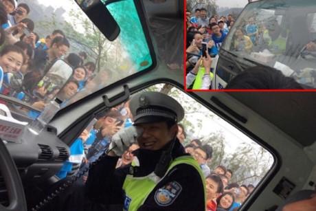 Anh chàng buộc phải vào xe và rời khỏi hiện trường để tránh tình hình thêm hỗn loạn.