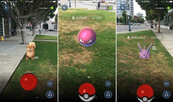 Huấn luyện Pokémon để tăng cấp độ. (Ảnh:internet)